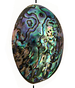 Abalone Puff Oval 55-65x35-45mm