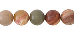 Petrified Wood Agate Round 10mm