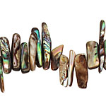 Abalone Stick 3-7x18-23mm