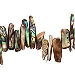 Abalone Stick 3-7x18-23mm