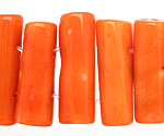 Coral 2-Hole Tube 9-14x22-30mm