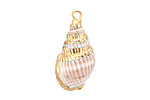 Light Brown Small Conch Shell Pendant w/ Gold Finish 10-14x18-28mm