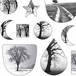 Nunn Design Black & White Trees Collage Sheet