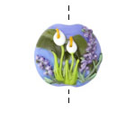 Grace Lampwork Calla Lily Lake Focal Bead 24-25mm