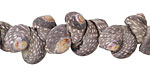 African Shell Beads 10-12mm