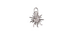Clear CZ Stainless Steel Sunburst Charm 11x15mm