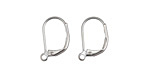 Stainless Steel Leverback Earring w/ Open Loop 11x15mm
