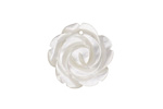 Mother of Pearl Carved Rose Pendant 20mm