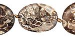 Turritella Agate Flat Oval 25-30x20mm
