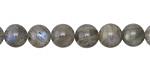 Labradorite (A) Round 8mm