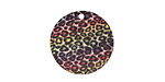 Rainbow Leopard Etched & Printed Gold Finish Coin Focal 20mm