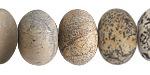 Artistic Stone (matte) Rondelle 13x18mm