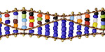 Zola Elements Multi Color & Cobalt Beaded Double Helix on Brass Chain