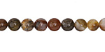 Petrified Wood Round 6mm