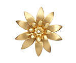 Brass Daffodil 34mm