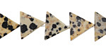 Dalmatian Jasper Triangle 11-12x13mm