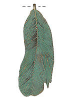 Zola Elements Patina Green Brass Curved Feather Pendant 20x63mm
