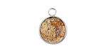 Picture Jasper Coin Focal w/ Silver Finish 13x17mm