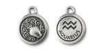 TierraCast Antique Silver (plated) Round Aquarius Charm 15x18mm