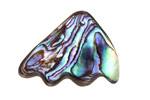 Abalone Curved Freeform Pendant 22-34x26-36mm