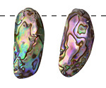 Abalone 2-Hole Graduated Shell Drops 15x26-32x47mm