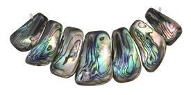 Abalone Freeform Bib Graduated Pendant Set 13x24-18x36mm