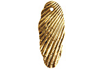 Nunn Design Antique Gold (plated) Organic Scallop Shell Drop 12x31mm