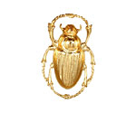 Brass Scarab Pendant 20x32mm