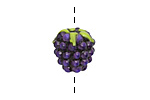 Grace Lampwork Purple Grapes Focal 10x16mm
