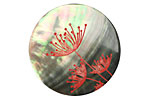 Lillypilly Red Queen Anne's Lace Black Lip Shell Round Cabochon 31mm