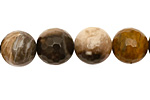 Black Petrified Wood Faceted Round 12mm