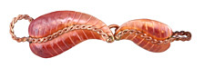 Patricia Healey Copper Leaves Hook & Eye Clasp 70x17mm