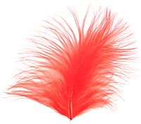Tangerine Marabou Feather 100-152mm