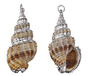 Banded Cinerea Shell Pendant w/ Silver Finish 15-21x36-47mm
