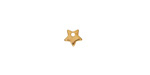 Gold (plated) Stainless Steel Tiny Star Charm 6mm