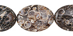Turritella Agate Flat Oval 25x18mm