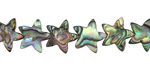 Abalone Star 10mm