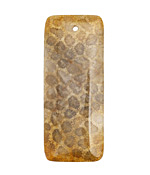 Fossil Jasper Rectangular Pendant 20x50mm
