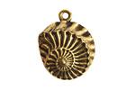 Nunn Design Antique Gold (plated) Nautilus Pendant 22x28mm