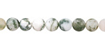 Tree Agate (A) Matte Round 6mm