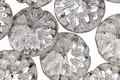 Czech Glass Antique Silver Dahlia Coin 14mm