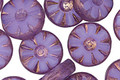 Czech Glass Bronzed Electric Purple Flower Window Coin 12mm