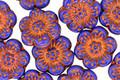 Czech Glass Bronzed Indigo Wild Rose Coin 13mm