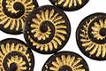 Czech Glass Matte Jet w/ Gold Ammonite Coin 18mm