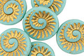 Czech Glass Matte Turquoise w/ Gold Ammonite Coin 18mm