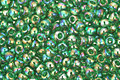 TOHO Transparent Rainbow Grass Green Round 11/0 Seed Bead