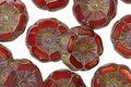 Czech Glass Campfire Picasso Hibiscus Coin 12mm
