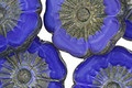 Czech Glass Cobalt Picasso Hibiscus Coin 22mm