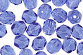 Czech Fire Polished Glass Sapphire Round 6mm
