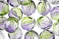 Czech Fire Polished Glass Dual Coated Blueberry/Green Tea Round 8mm
